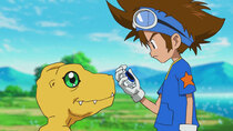 Digimon Adventure: - Episode 4 - Birdramon Soars