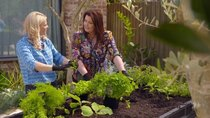Better Homes and Gardens - Episode 38 - Episode 38
