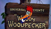 The Woody Woodpecker Show - Episode 2 - Cracked Nut, AKA Woody Woodpecker