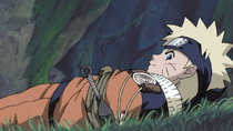 Naruto - Episode 28 - Eat or Be Eaten: Panic in the Forest