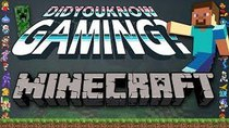 Did You Know Gaming? - Episode 41 - Minecraft