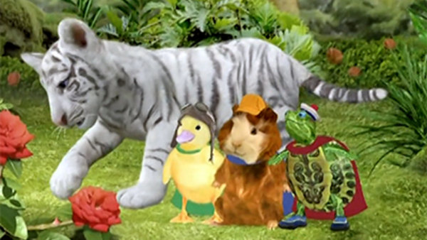 Wonder Pets Save The Bengal Tiger Metacafe - Image Of ...