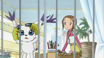 Digimon Adventure 02 - Episode 12 - Duel on the Digimon Ranch