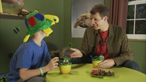 "Tosh.0 - Episode 23 - ""I Like Turtles"" Kid"