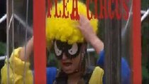 I'm a Celebrity... Get Me Out of Here! - Episode 7 - Horri-flying Circus