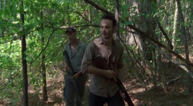 Watch The Walking Dead - Season 2 Online Free On