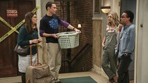 The Big Bang Theory - Episode 4 - The Cohabitation Experimentation
