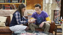 The Big Bang Theory - Episode 9 - The Geology Elevation