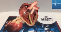 Futurism - Episode 73 - Examine A Beating Heart Right Before Your Very Own Eyes