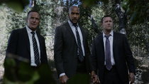 Marvel's Agents of S.H.I.E.L.D. - Episode 10 - The Patriot
