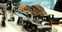 Futurism - Episode 148 - Robotic Reptiles Move and Look Just Like the Real Thing