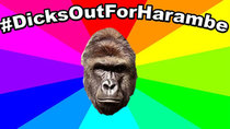 Behind The Meme - Episode 1 - The meaning and origin of dicks out for harambe #dicksoutforharambe