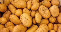 Futurism - Episode 532 - Scientists: Potatoes Can Grow on Mars