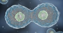Futurism - Episode 711 - One Woman's Immortal Cells Have Saved Hundreds of Thousands...