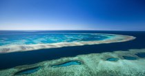 Futurism - Episode 922 - Scientists Announce That The Great Barrier Reef is Officially...