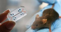 "Futurism - Episode 924 - The FDA Is Moving From Animal Testing To ""Organs-On-Chips"""