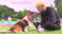 Run BTS! - Episode 23 - Pet Friends