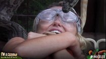 I'm a Celebrity... Get Me Out of Here! - Episode 16 - Episode 16