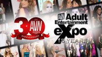 AVN Awards - Episode 30 - 2013 AVN Awards