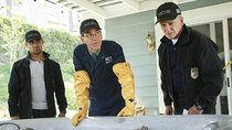 NCIS - Episode 2 - Love Thy Neighbor