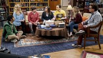 The Big Bang Theory - Episode 8 - The Consummation Deviation