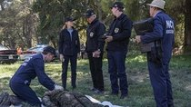 NCIS - Episode 8 - Friendly Fire