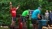I'm a Celebrity... Get Me Out of Here! - Episode 12 - Episode 12