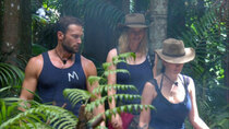I'm a Celebrity...Get Me Out of Here! (DE) - Episode 11 - Tag 11: Sterneküche