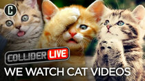 Collider Live - Episode 11 - We Watch Cat Videos (#63)
