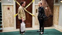 The Big Bang Theory - Episode 9 - The Citation Negation