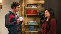The Big Bang Theory - Episode 12 - The Propagation Proposition