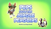 Paw Patrol - Episode 1 - Pups Save the Jungle Penguins