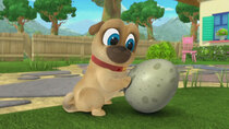 Puppy Dog Pals - Episode 31 - What to Expect When You're Egg-specting