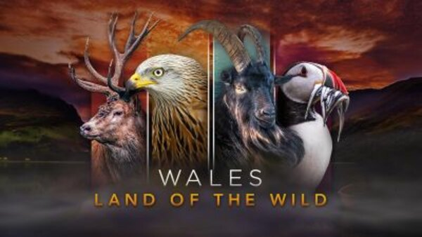 Wales: Land of the Wild - S01E01 - The Return of The Sun