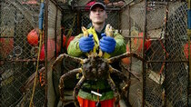 Deadliest Catch - Episode 3 - Knife in the Ribs