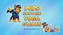 Paw Patrol - Episode 14 - Pups Save the Yoga Goats