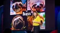 TED Talks - Episode 118 - Lucy Cooke: Sloths! The strange life of the world's slowest mammal