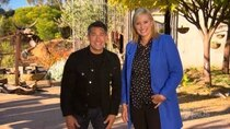 Better Homes and Gardens - Episode 20 - Episode 20