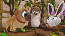 Puppy Dog Pals - Episode 42 - When Hedgie Met Sallie