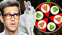 Good Mythical Morning - Episode 124 - Can We Bet On What This Bunny Wants? (GAME)
