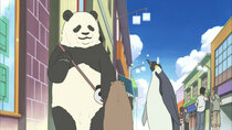 Shirokuma Cafe - Episode 20 - The Ideal Single Living / Summer Festival