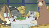 Shirokuma Cafe - Episode 12 - Panda, Tired of Boredom / Panda's Advice Room for Troubles