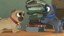 Puppy Dog Pals - Episode 59 - To the Library!