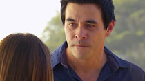 Home and Away - Episode 204 - Episode 7244