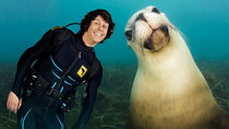 Andy's Aquatic Adventures - Episode 5 - Andy and the Galapagos Sea Lions