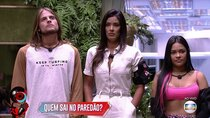 Big Brother Brasil - Episode 63 - Day 63
