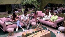 Big Brother Brasil - Episode 91 - Day 91