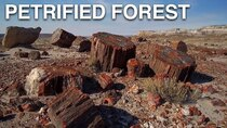 Rock the Park - Episode 21 - Petrified Forest National Park