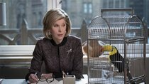 The Good Fight - Episode 4 - The Gang is Satirized and Doesn't Like It