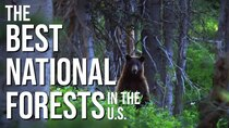 Rock the Park - Episode 24 - Best of National Forests